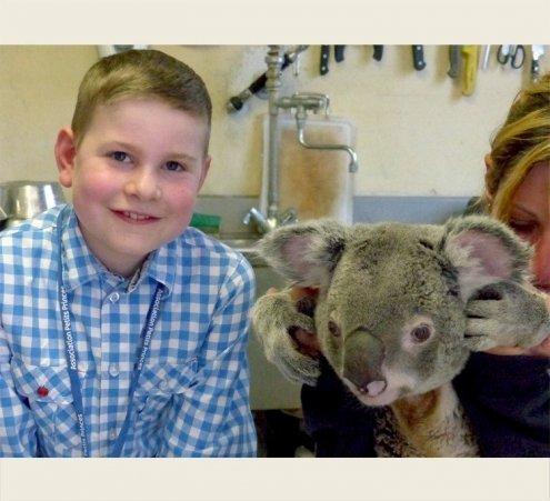 Le rêve d'Antoine : caresser un koala !