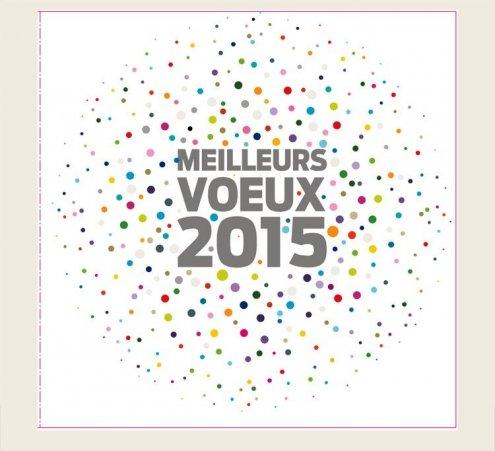 Cartes de voeux solidaires 2015 !