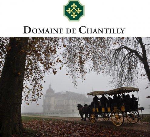Noël solidaire au Domaine de Chantilly