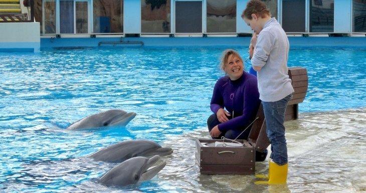 Anthony et les dauphins du Parc Astérix !