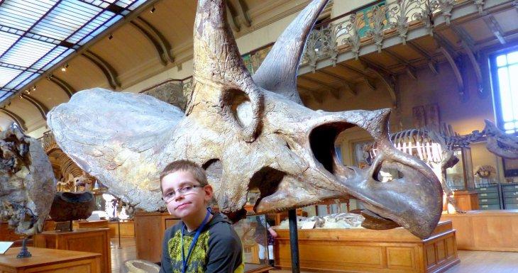 Paleontologic world