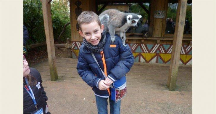 A la rencontre des animaux du zoo de la Flèche !